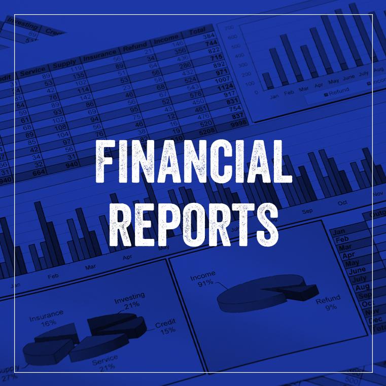 Finacial Reports P1